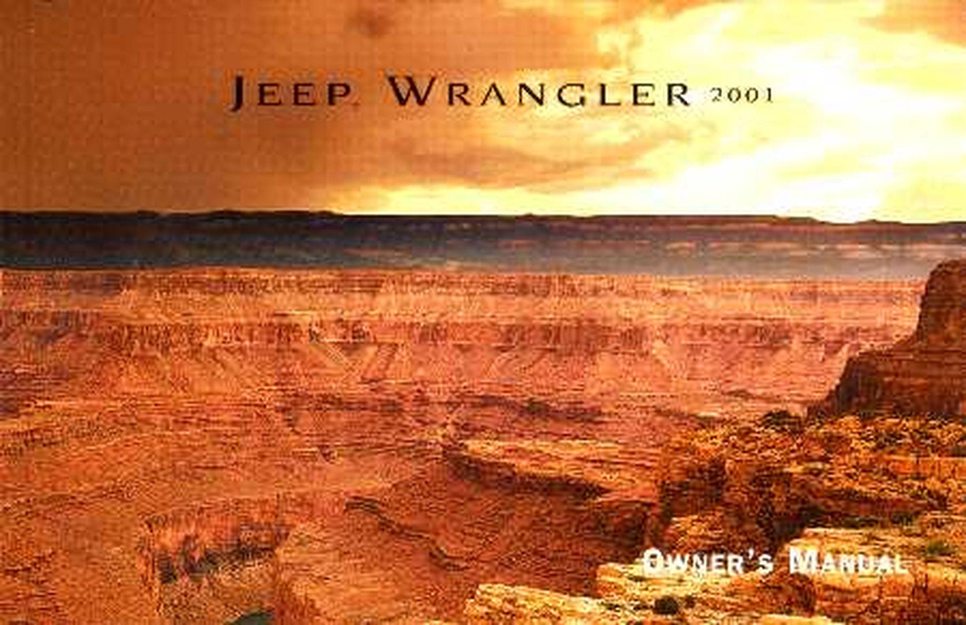 Details about Bishko OEM Repair Maintenance Owner's Manual Bound for Jeep  Wrangler 2001